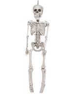 skeleton hanging